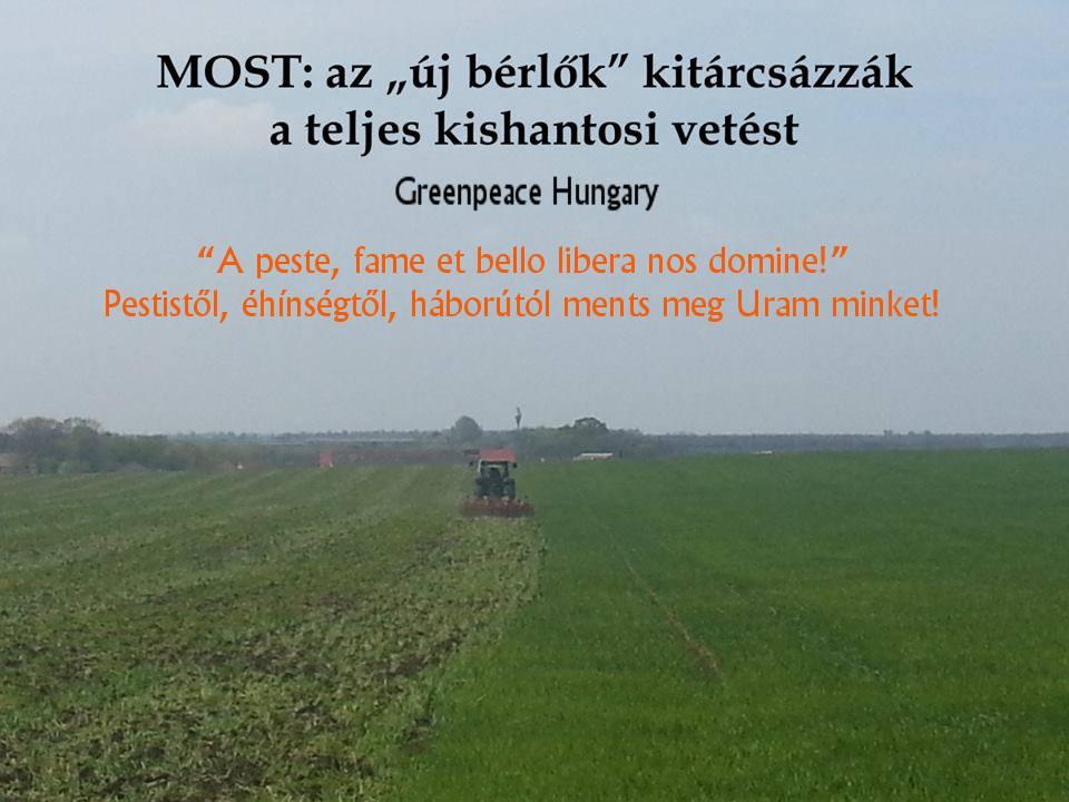 """430 hektáron tárcsázzák ki a bevetett földeket traktorosok az """"új bérlők"""" megbízásából Kishantoson. (Fotó: a Greenpeace Hungary fényképe alapján Kiss M.)"""