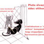 Maradj_otthon_stop_koronavirus